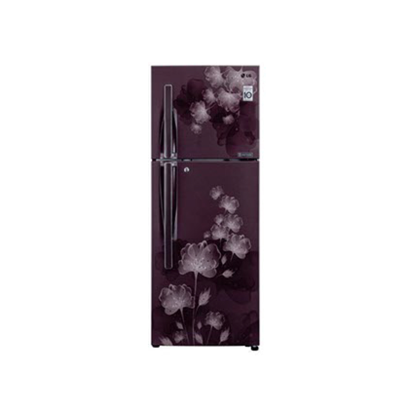 Lg 310 Ltr Double Door Refrigerator Gl S322rpcl