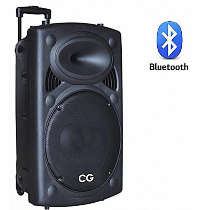 """CG TS12A01 12"""" Trolley Speaker - (Black)"""