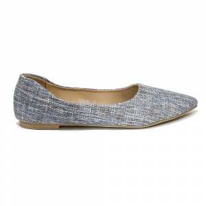 Plain Pointed Flat Close Shoe For Women 123-31
